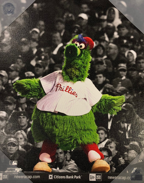 Phanatic Philadelphia Phillies Canvas Print 16x20 - Dynasty Sports & Framing