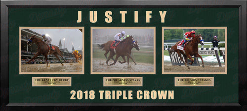 Mike Smith & Justify 2018 Triple Crown Winner Framed and Matted Horse Racing Collage - Dynasty Sports & Framing