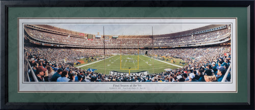 Philadelphia Eagles Veteran's Stadium Final Season NFL Football Rob Arra Framed and Matted Stadium Panorama
