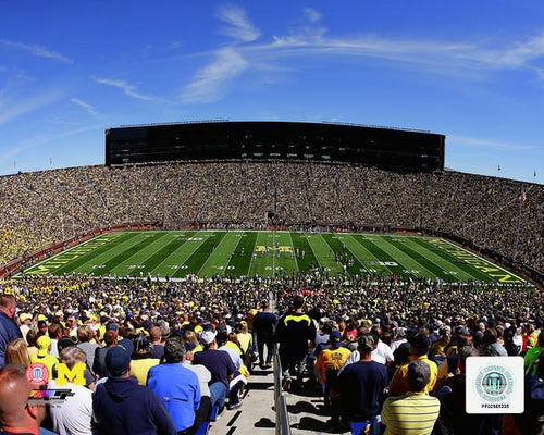 "Michigan Wolverines Michigan Stadium NCAA College Football 8"" x 10"" Photo"