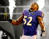 "Baltimore Ravens Ray Lewis 8"" x 10"" Photo - Dynasty Sports & Framing  - 1"