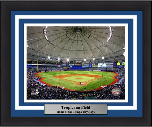 "Tampa Bay Rays Tropicana Field MLB Baseball 8"" x 10"" Framed and Matted Stadium Photo"