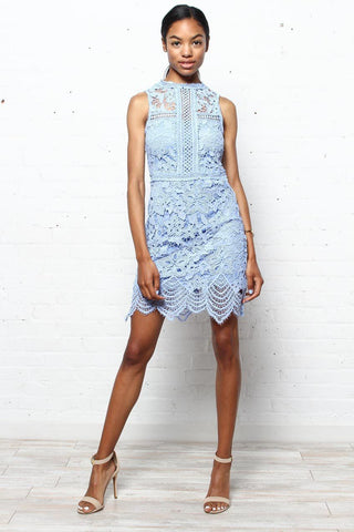 Dip Out Lace Dress
