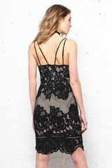 Evelyn Lace Bodycon