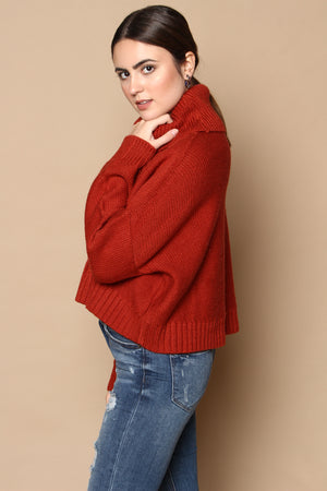 BB Dakota Say Anything Cropped Turtleneck Sweater - Burnt Orange