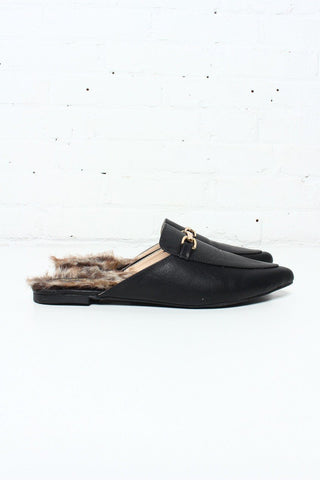 Shoes Calico