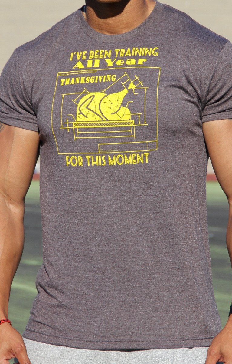 I've Been Training All Year Men's Workout Triblend T-Shirt- The Sox Box