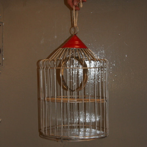 Metal Wire Birdcage