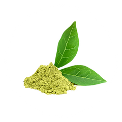 Green Tea Extract - The Hangover Solution Ingredient