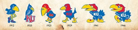 Evolution of the Jayhawk