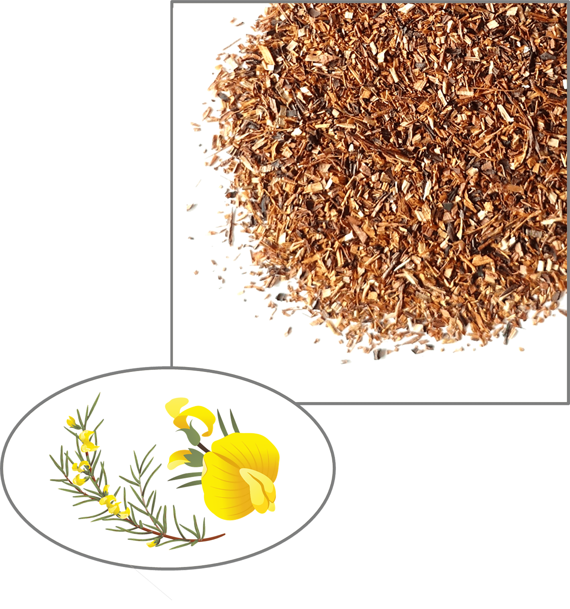 A golden orange and brown pile with flecks of white and brown tea leaves that makes up a pile of blended honeybush and rooibos teas, a sample of Cape De Hoop's Honeybush Blend Tea.