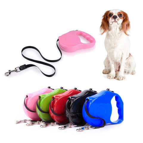 Strong Retractable Dog Pet Puppy Lock Lead Training Walking Clip On Leash 5M