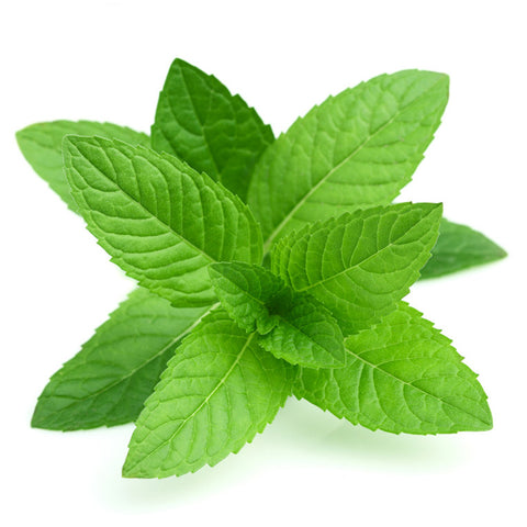 Menthol flavour high vg eliquid 100 ml £19.99 - VapingLiquid.com