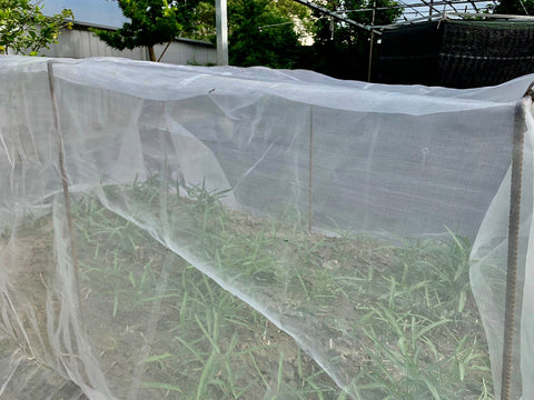 Fine Insect Netting