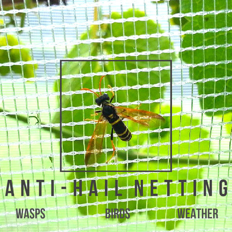 Anti-Hail, Butterfly & Wasp Netting