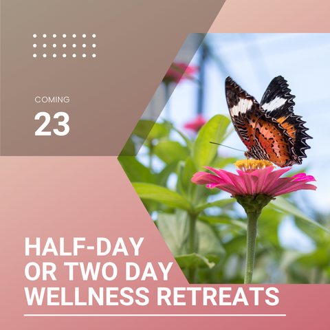 Rose colored background with orange and black Butterly resting on a pink flower. Text reads: have day or two-day wellness retreats.