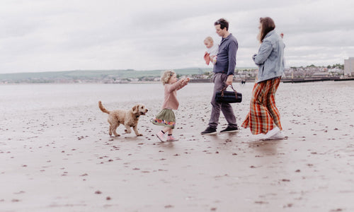TBCo. family on Portobello beach with picnic blanket and dog