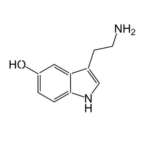 Serotonin - inkbox tattoos - 4