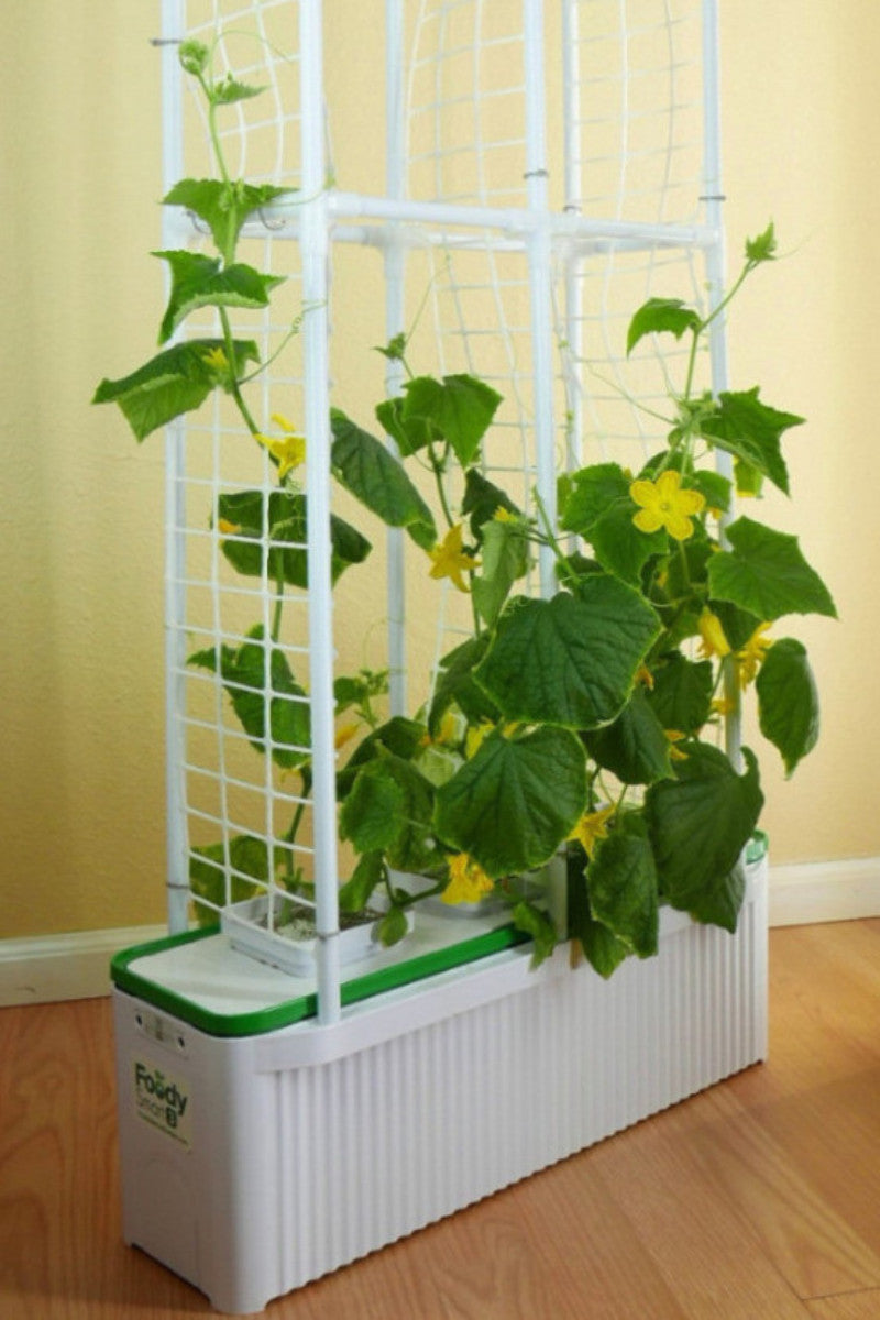 Foody Smart 3 with Climbing Frame