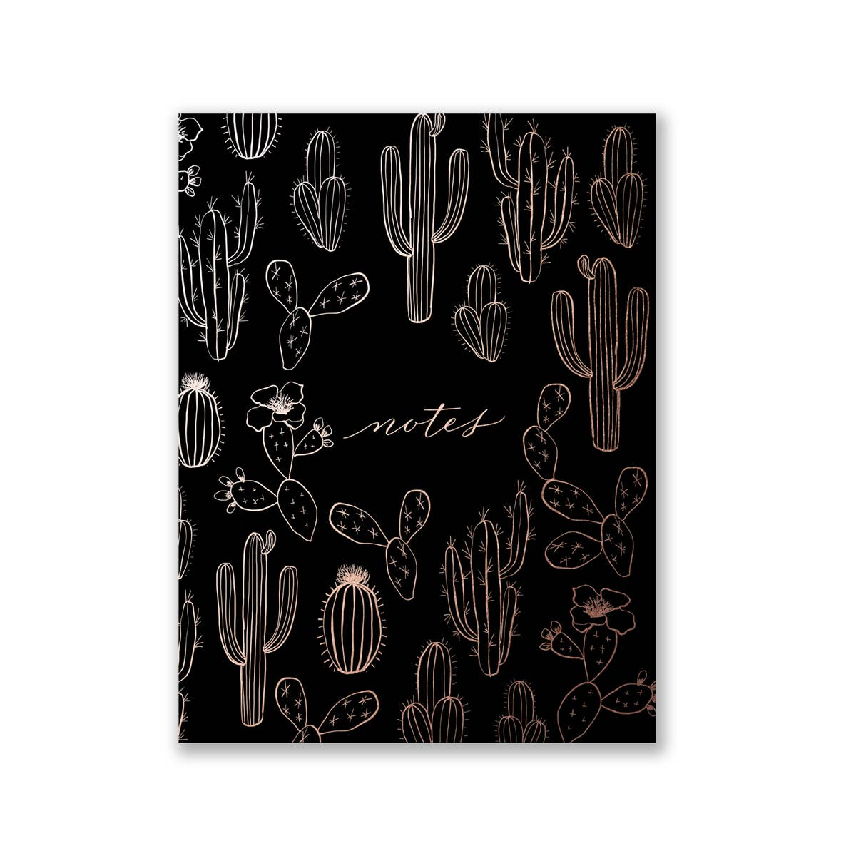 CACTUS JOTTER POCKET NOTES