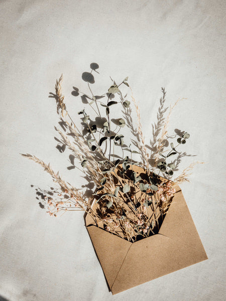 Dried flowers in an envelope