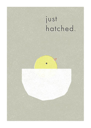 JUST HATCHED - Fine Art Print - Freya Art & Design