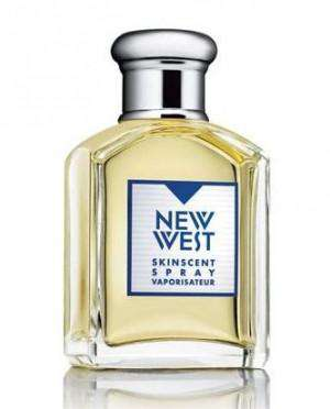 Aramis New West 100ml EDT   Aramis For Him
