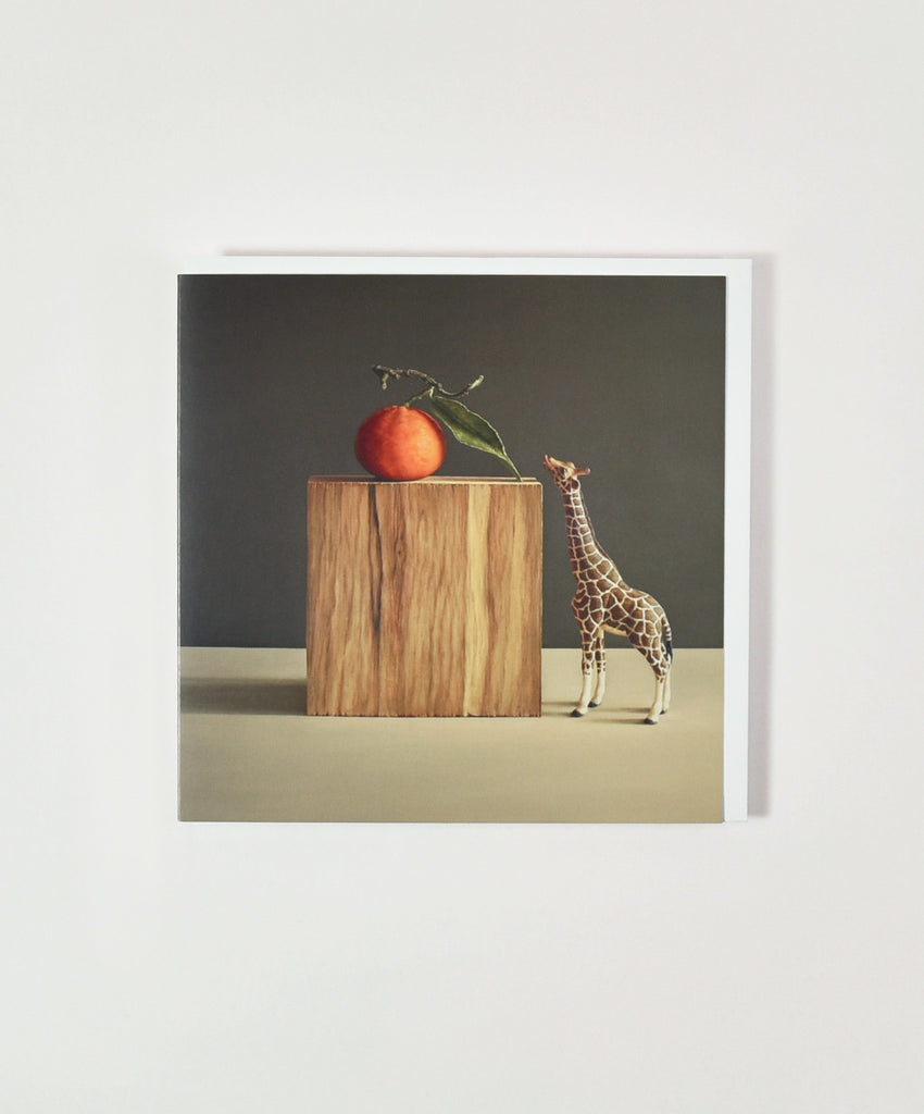Giraffe with Nectarine