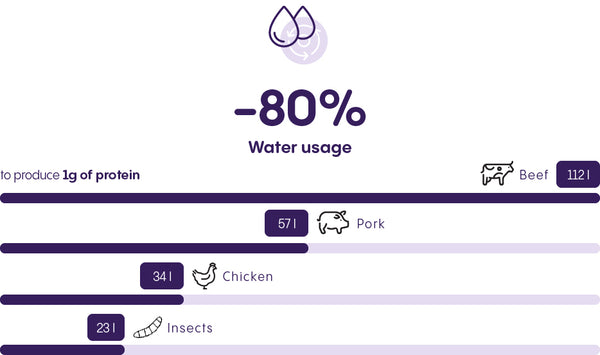 Insects require 80% less water usage compared to beef to produce 1g of protein