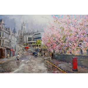 Spring Blossom and Marischal College