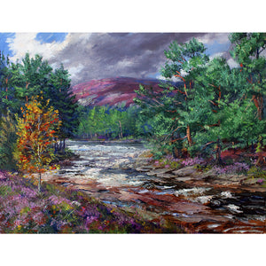 This upper Royal Deeside landscape of the River Dee coming down from its source in the Cairngorms National Park is a signed limited edition giclee print by Howard. Moody skies over the Forest of Mar's Caledonian pines and heather clad mountains of nearby Cairn Toul near Muir Cottage above Braemar available as a signed limited edition giclee print by Howard Butterworth