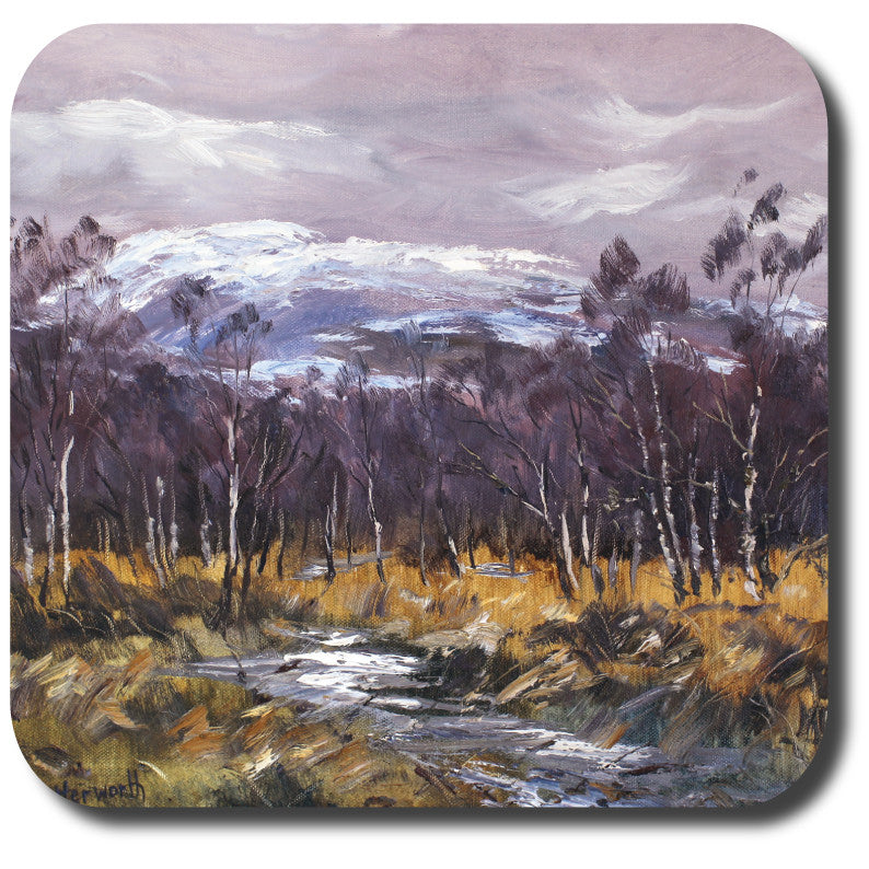 Winter Idyll Coaster