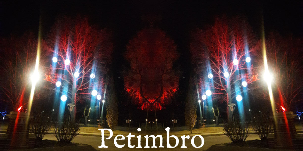 A mirrored image of trees at night with Petimbro written over it