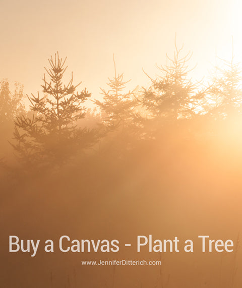 Buy a Canvas - Plant a Tree