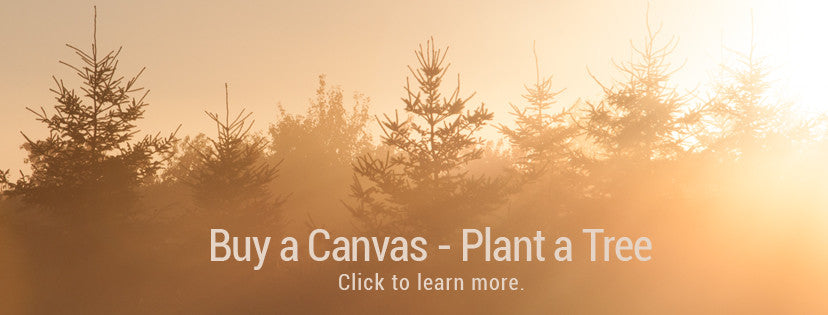 Buy a Canvas Plant a Tree