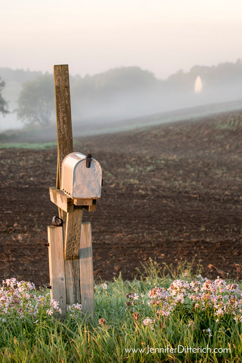 Farm Mailbox Photograph by Jennifer Ditterich Designs
