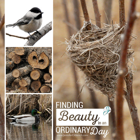 Finding Beauty in an Ordinary Day | www.JenniferDitterich.com