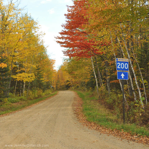 MN Highway 200 in Autumn by Jennifer Ditterich