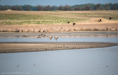 Kelly's Slough in North Dakota by Jennifer Ditterich