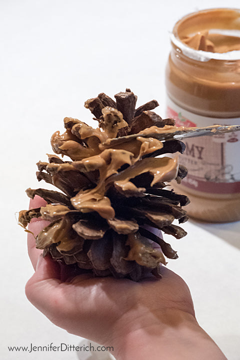 Use peanut butter to hold birdseed onto pinecone birdfeeders