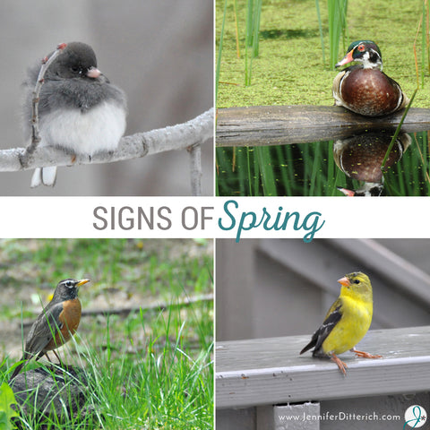 Signs-of-Spring-Blog-Jennifer-Ditterich-Designs