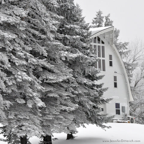 Photographing Winter on the Farm by Jennifer Ditterich Designs