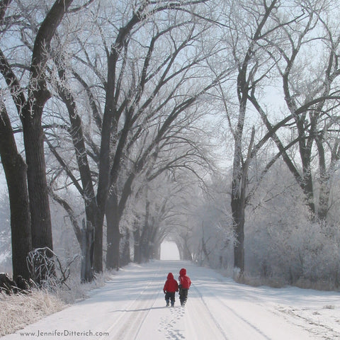 Winter Road by Jennifer Ditterich Designs