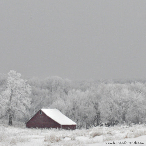 Winter Farm Building in the Frost by Jennifer Ditterich