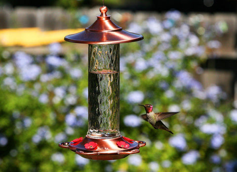Copper roof hummingbird feeder