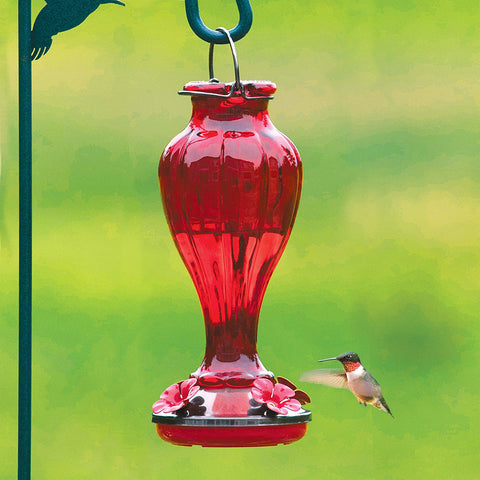red glass hummingbird feeder