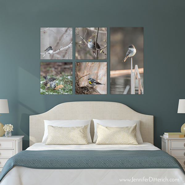 Blending In - Canvas Bird Print