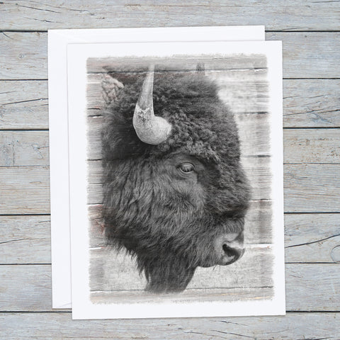 Bison Note Cards