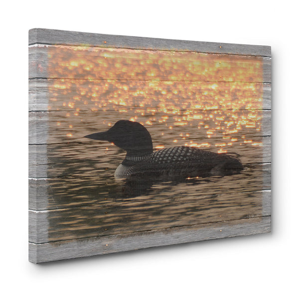 Sunset Loon Canvas Print