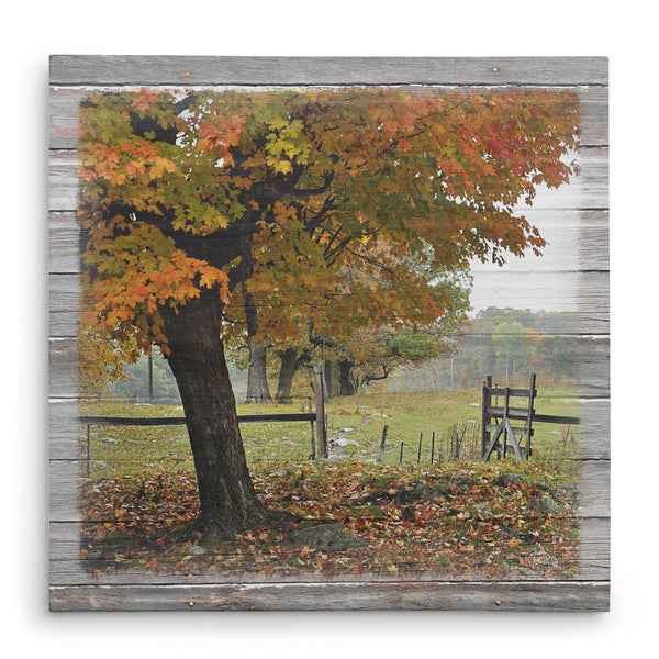Franklin's Gate in Autumn Canvas Print